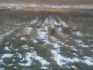 Альметьевск: Участок в с,Миннибаево Продам участок в селе Миннибаево. На участке имеется бутка для инструментов, электричество 380В, водопровод имеется -колодец на