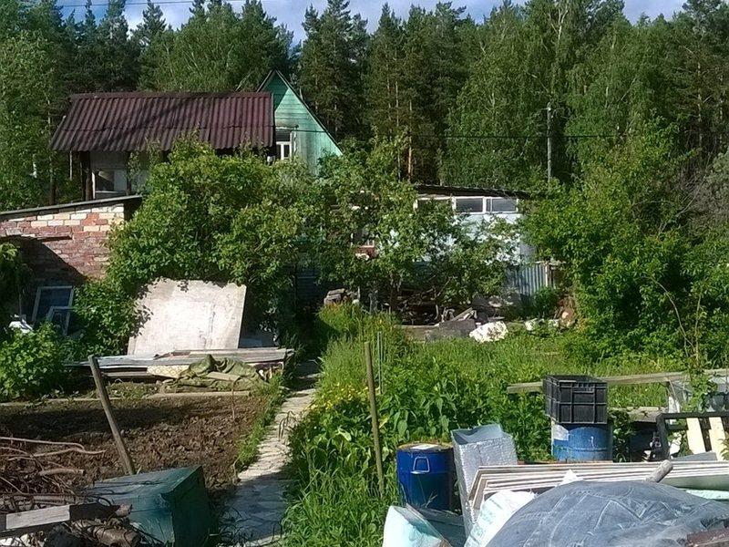 сад на широкой речке екатеринбург купить Денис Быков
