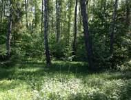 Москва: Недвижимость в Дракино. Поклонникам красоты истинно русской природы, любителям активного отдыха. Очень красивый прилесной Недвижимость в Дракино. Покл