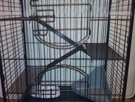 Нижний Тагил: клетка для хорьков Клетка-вольер для животных (хорьков, белок, шиншилл, взрослых крыс) с выдвижным пластиковым поддоном глубиной 3, 5 см, полностью из