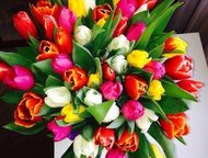 Цветы с доставкой в Москве Если вы хотите поздравить своих знакомы, близких или друзей В Москве мы с удовольствием Вам поможем большой выбор цветов и , Омск - Организация праздников