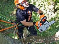 Спил, обрезка и удаление аварийных деревьев Спил, обрезка, удаление аварийных деревьев. Выполним работу быстро, качественно, безопасно. В любых стесне, Сочи - Разные услуги