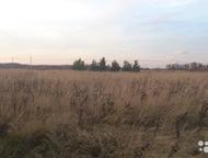 Тула: Участок 2 га в Алексинском районе с электричеством недорого! Участки под усадьбу, крестьянско-фермерское хозяйство. 160 км от МКАД по Симферопольскому